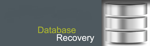 Database Data Recovery